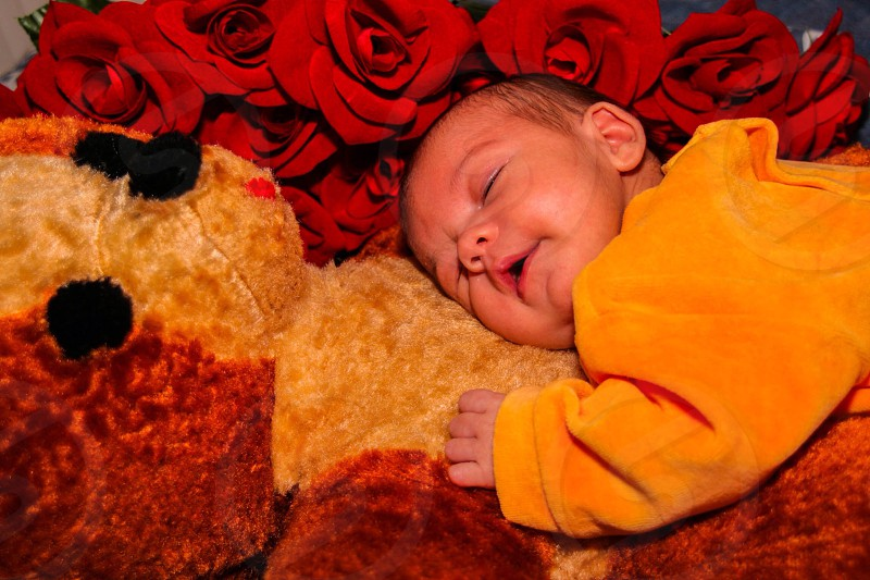 My little girl sleeping on top of her daddy's teddy bear wich was his when he was a little boy photo
