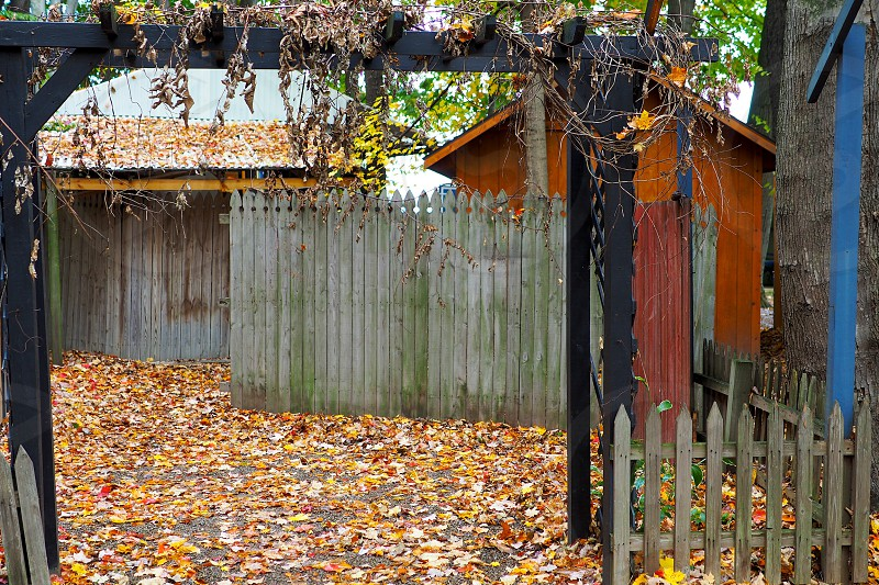 Gate. Arbor. Fences. Old buildings. Autumn. Fall. Color.Rustic. Frame. Framed. Leaves. photo