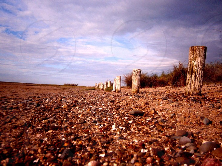 Pentraeth beach. The buried fence. photo