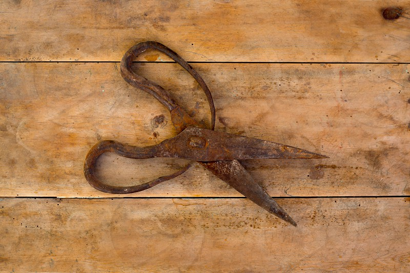 Antique sheep wool shears scissors vintage rusted on retro wood photo