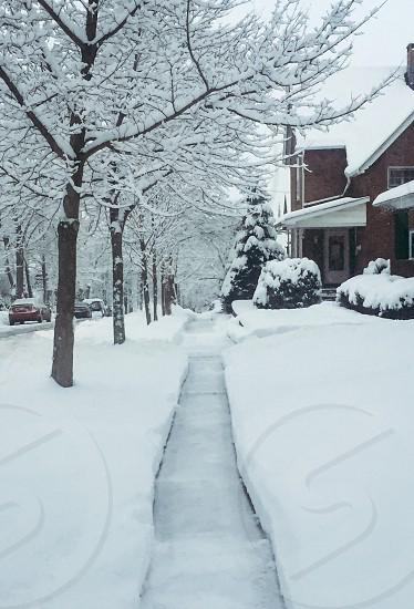 Snow shoveling path  photo