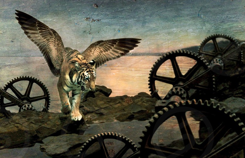 tiger with wings climbing rocks photo