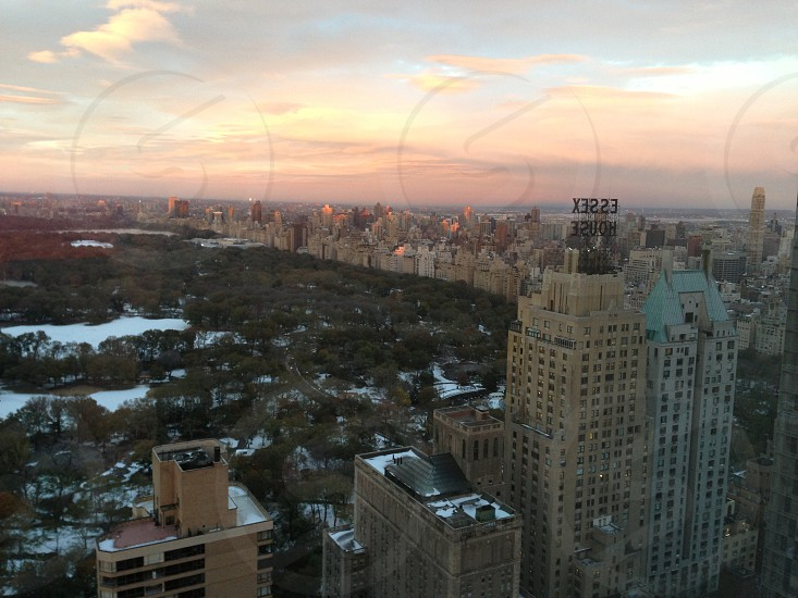 Central Park at sunset photo
