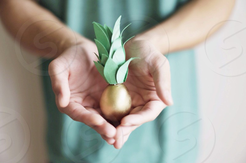 person holding golden and green item macro photography photo