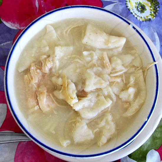 Chicken and dumplings in a bowl photo