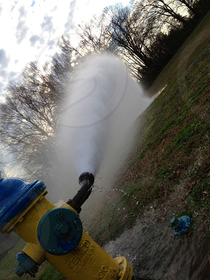 yellow and blue fire hydrant spewing water on green grassland during daytime photo