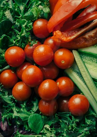Vegetables tomato cucumber salad pepper photo