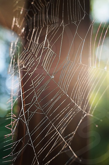"""HAPPY HALLOWEEN 
