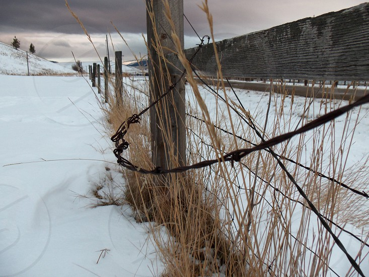 Snow and fence line photo