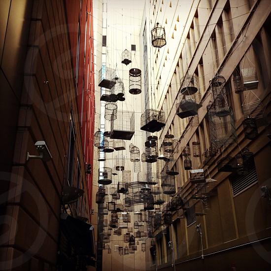 bird cages hanging between building photo