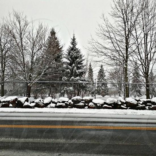 #snow fall #snowinthecity #grotoncity #trees nature beauty photo