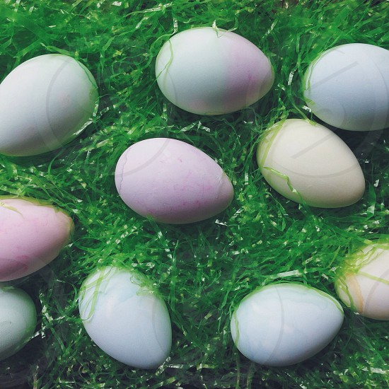colored easter eggs on green plastic grass photo