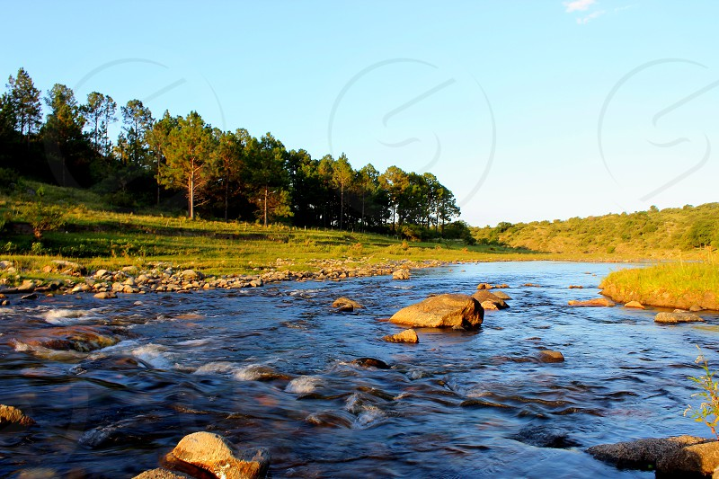 natural river with clear water next to forest photo