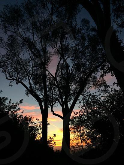 Sunset at Mt Helix California photo