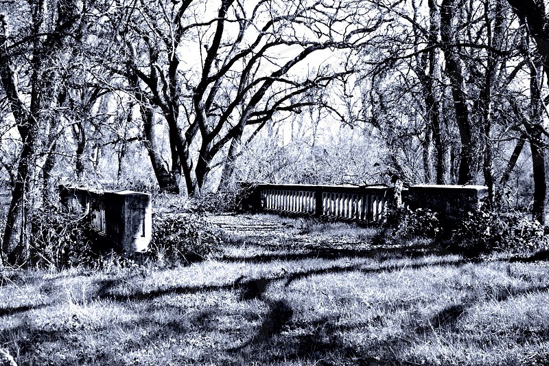 Old bridge with overgrowth in shadows B/W photo