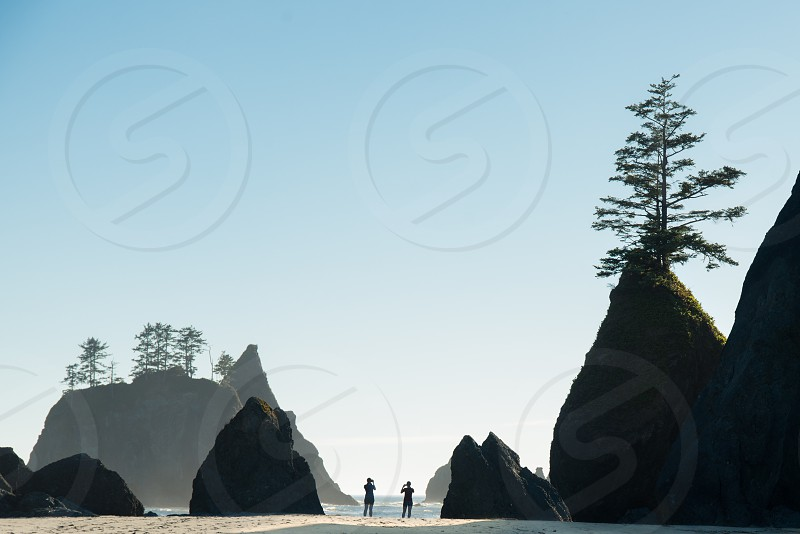 Shi Shi Beach has no lack of sea stacks.   Keywords: backpacking camping beach shi shi beach olympic peninsula olympics sea stacks seastacks landscape silhouette silhouettes photo