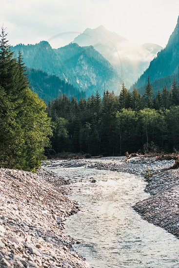 Mountain river valley landscape. Natural scenery of the mountain stream pine trees and mountain peaks in Tatra Mountains photo