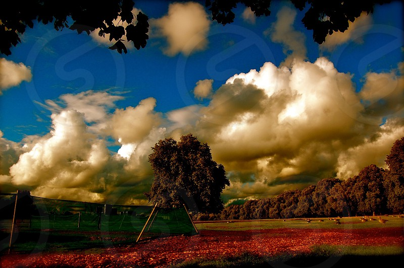 Bellowing Clouds photo