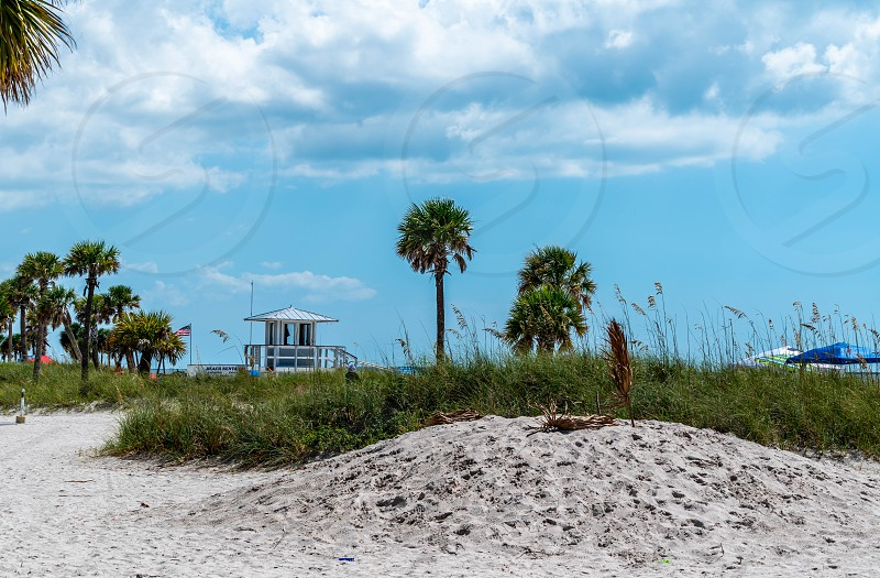 A day at Cypress Point Park in Tampa Florida. photo