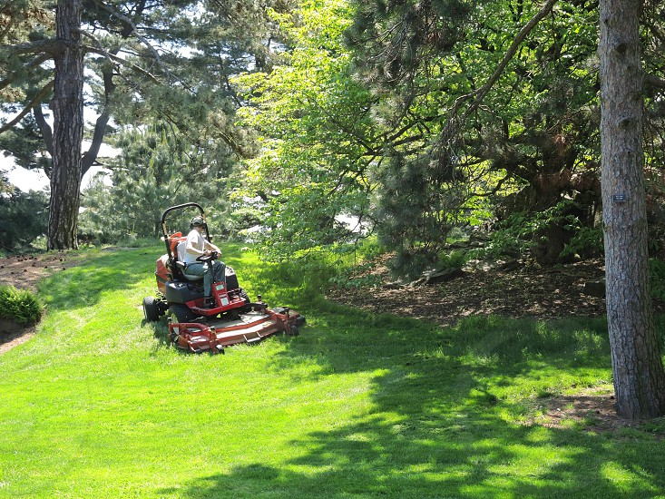 person driving a lawn mower photo