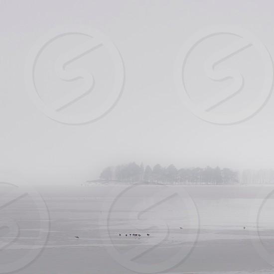 fog covered island photo photo