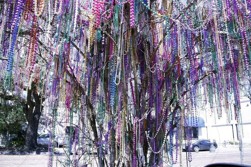 Famous Mardi Gras beads tree. St. Charles Avenue Mardi Gras Beads Tree. photo