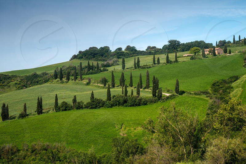VAL D'ORCIA TUSCANY/ITALY - MAY 22 : Scenery of Val d'Orcia in Tuscany on May 22 2013 photo