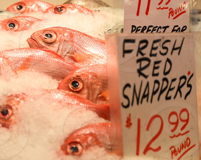 Fish - Pikes Market Seattle WA photo