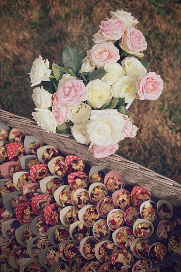 Bunch of roses with petal confetti cones photo