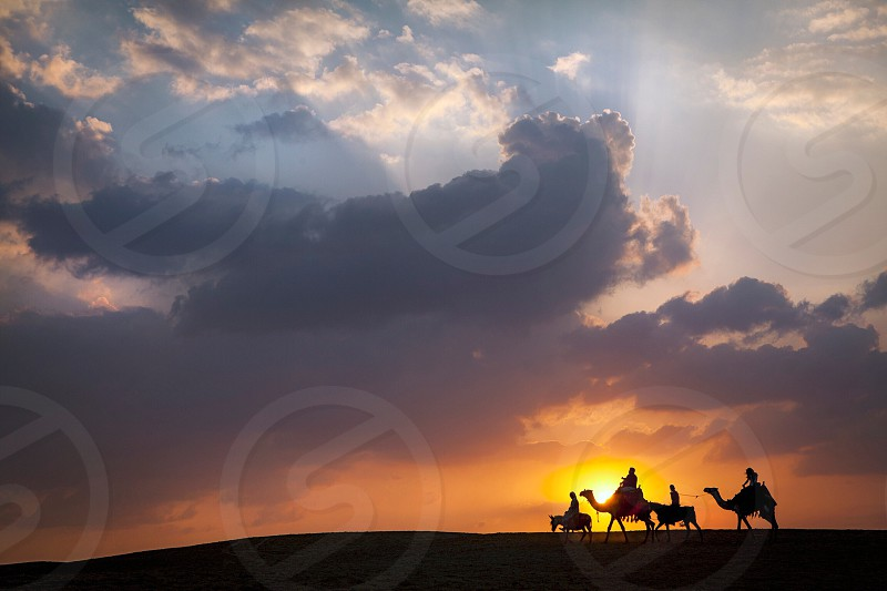 people riding camels under sunset photo