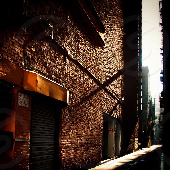brown bricked wall photo