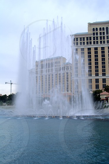 bellagio hotel and casino photo