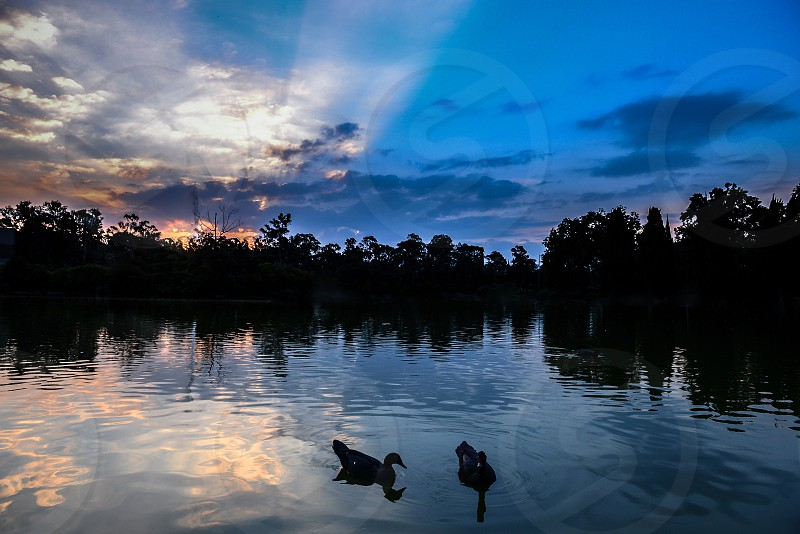 View from the Chapultepec lake on a incredible sunset. photo