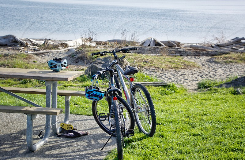 Beach bikes bicycle  exercise  well being photo