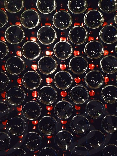 wine bottle rack photo