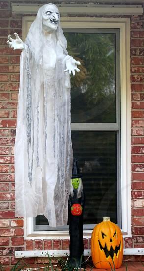 Halloween ghost witch pumpkin jack o'lantern  dark window photo