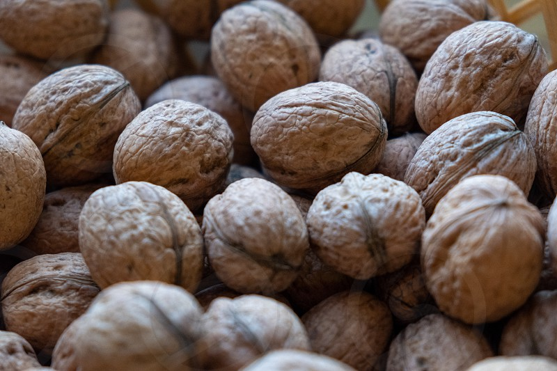 Many walnuts with a nutcracker photo