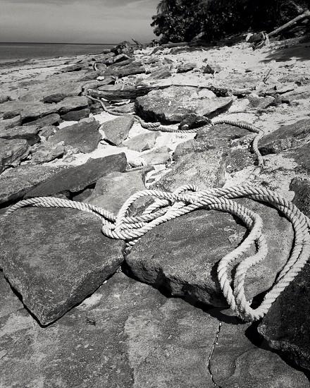 Tied up Fiji photo