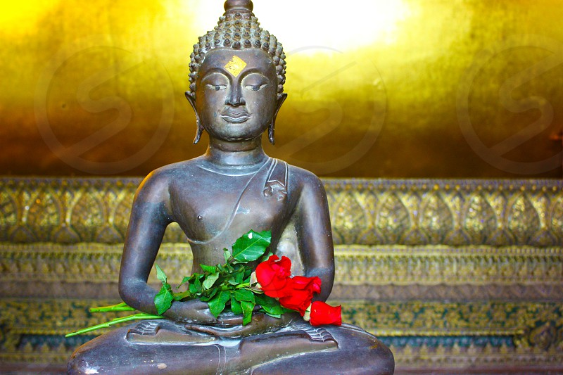 Buddhist temple Buddha Thailand Bangkok roses photo
