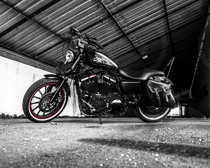 black touring motorcycle in selective color photography photo
