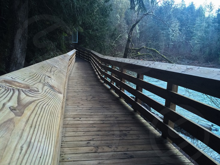 brown wooden footbridge with green trees photo