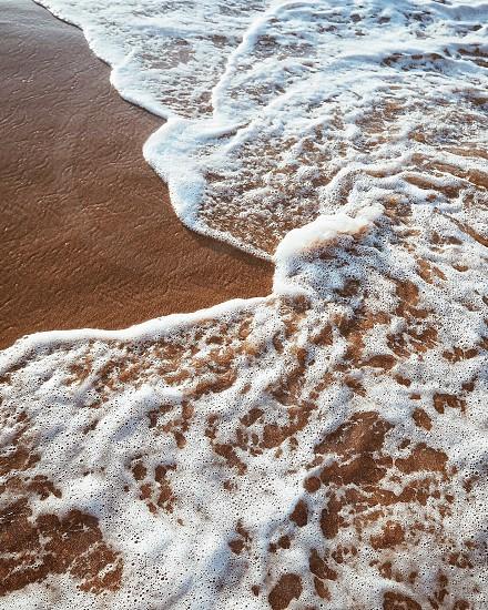 Beach water sand foam nature vacation holiday  photo