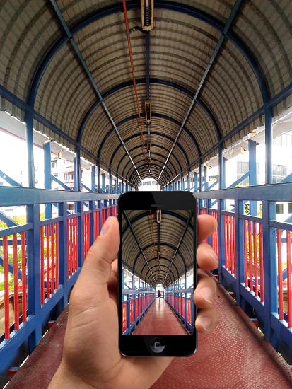snapping photo using apple phone  photo