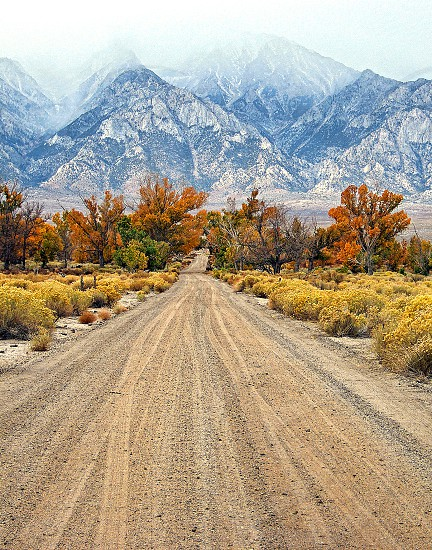 Fall in the Eastern Sierras with a path to mountains surrounded by trees with colorful leaves photo