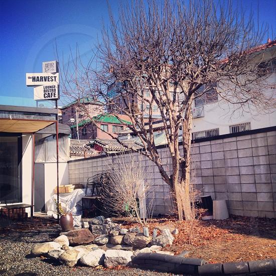 Hanok VillageSeoulKorea photo