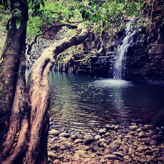 Twin Falls...Maui Hawaii photo