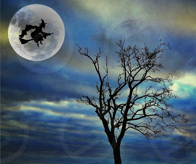 The witching hour... photo