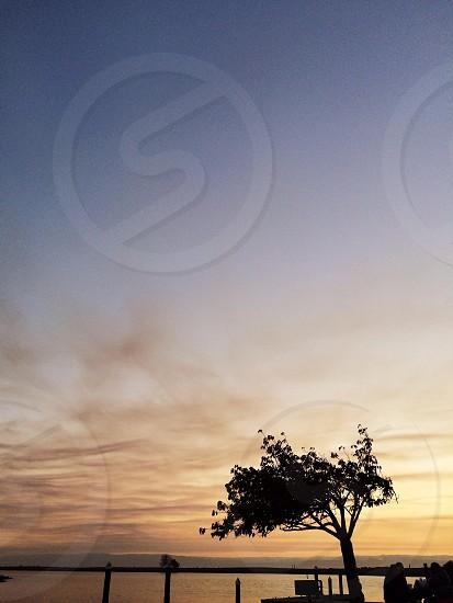 sky view photo