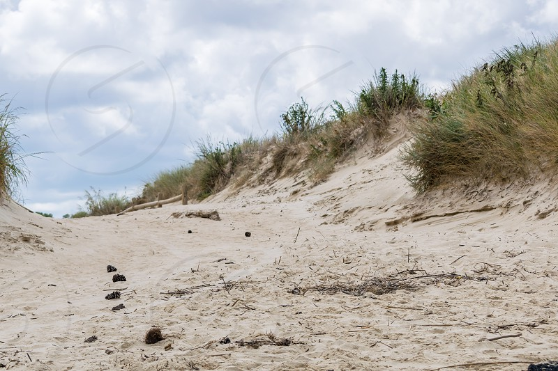Sand dune path with debris on it at the beach photo