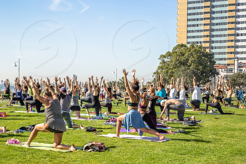 Yoga at the bluff photo